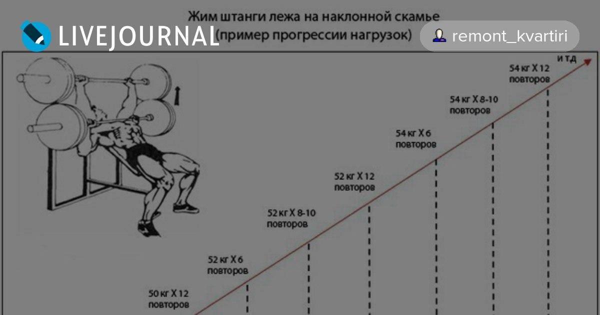 Жим штанги лежа. программа тренировок для начинающих