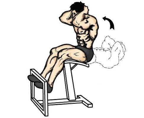 Упражнение римский стул в домашних условиях. скручивания и подъемы на наклонной скамье или римском стуле