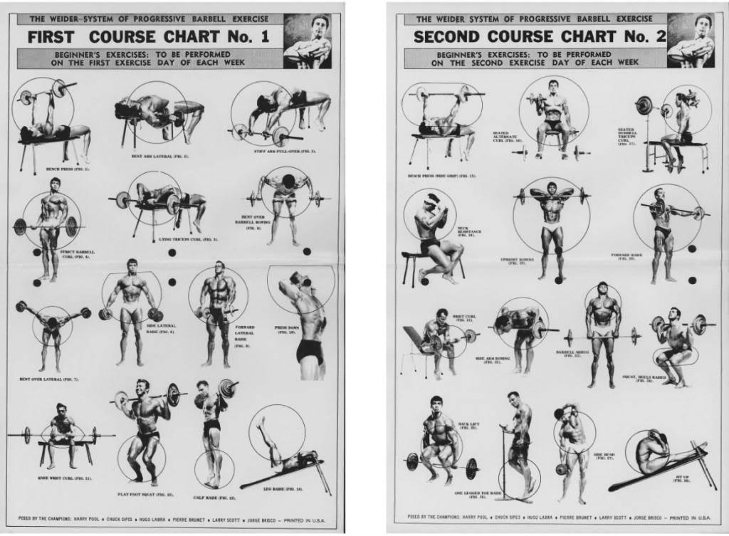 Джо вейдер - система строительства тела (глава 3 овладение исходными данными)