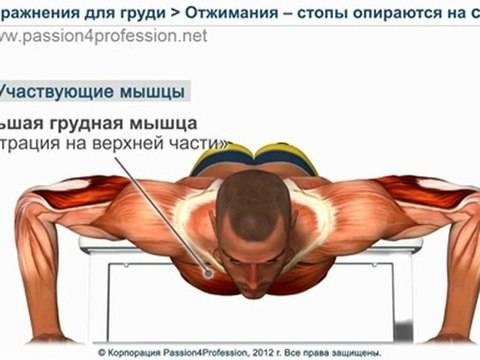 Как нужно правильно отжиматься   методы отжимания, чтобы накачать грудные мышцы