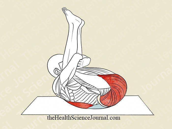 Как растягивать мышцы правильно? насколько сильно следует растягивать мышцы, чтобы развить гибкость? полезные наблюдения тренера.