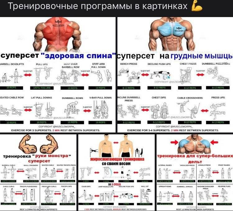 5 лучших программ тренировки для набора мышечной массы