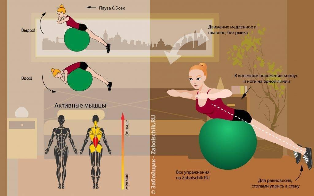 Лучшие упражнения для ягодиц на фитболе — топ 5 самых эффективных движений для ягодичных мышц и бедер