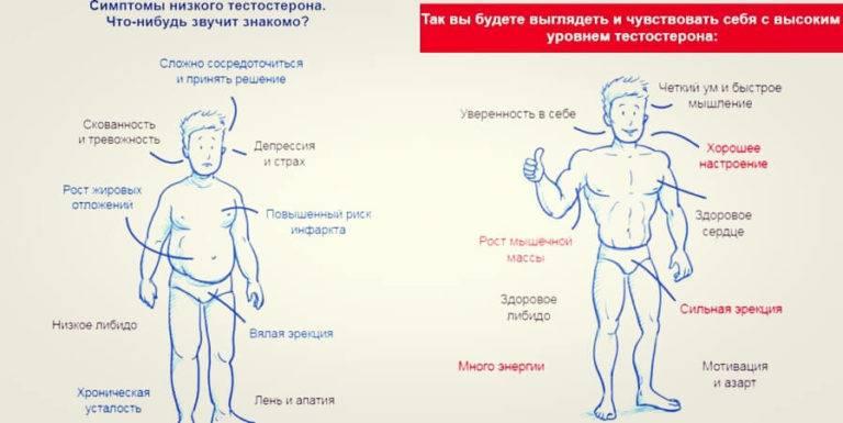Лечение низкого уровня тестостерона у мужчин * клиника диана в санкт-петербурге