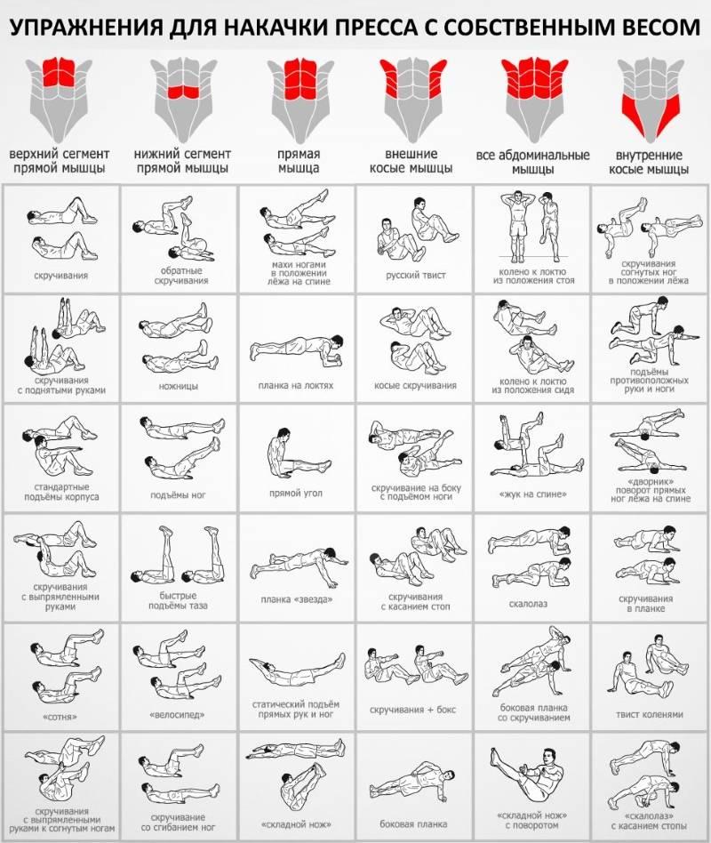 Комплекс силовых упражнений на мышцы