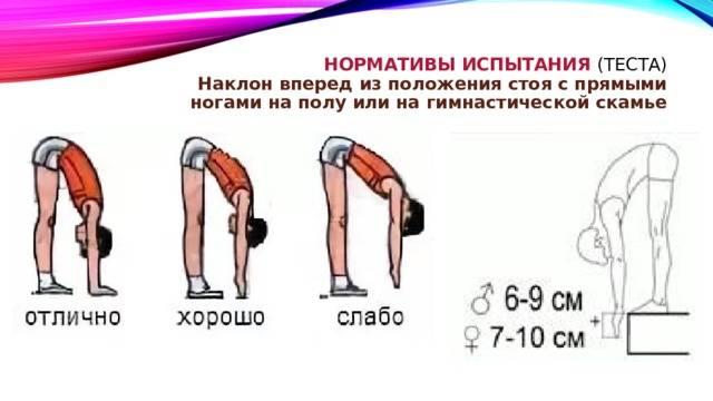 Упражнения с наклонами в сторону: особенности, техника выполнения, виды