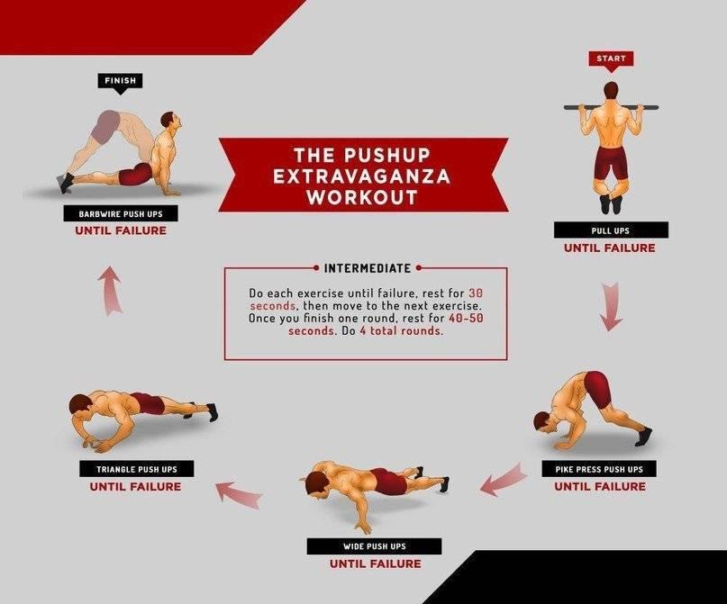 Домашние упражнения на все группы мышц: худеем вместе с фитнесс миром