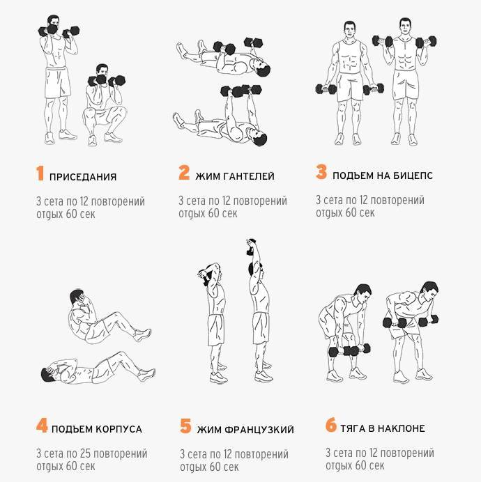 Суперсет на бицепс и трицепс. программа   musclefit