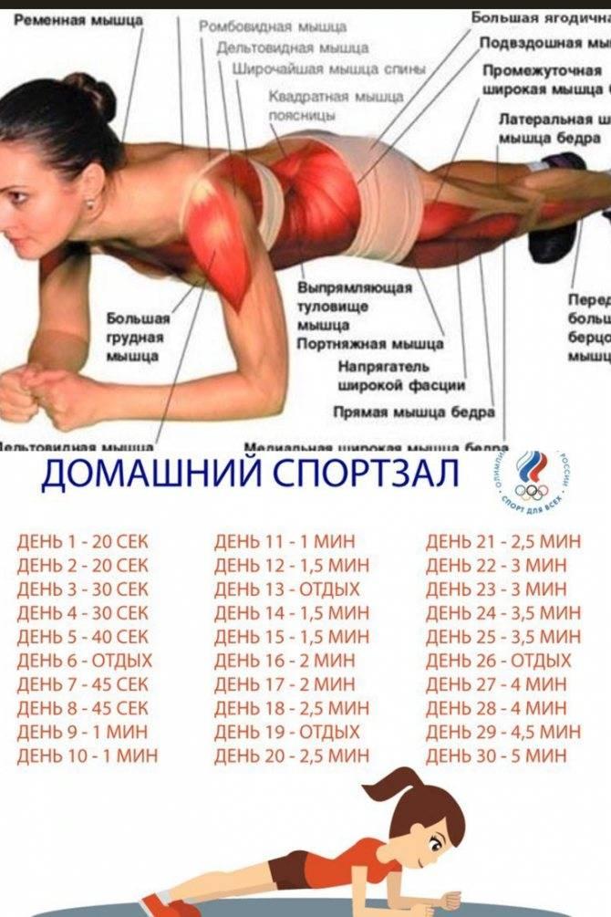 Боковая планка: как правильно делать упражнение женщинам и мужчинам
