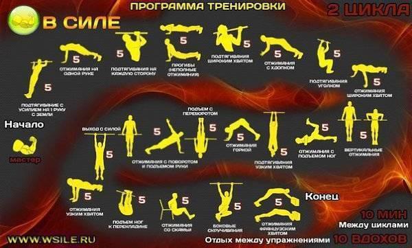 Круговой кроссфит: программа тренировок