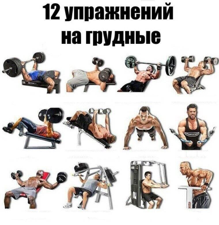 Тренировочная программа на грудные мышцы.