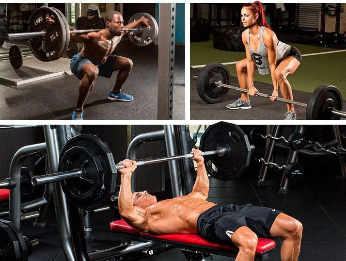 3 основных упражнения в тренажерном зале