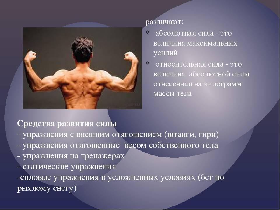 Развитие силы: всё, что надо знать спортсмену