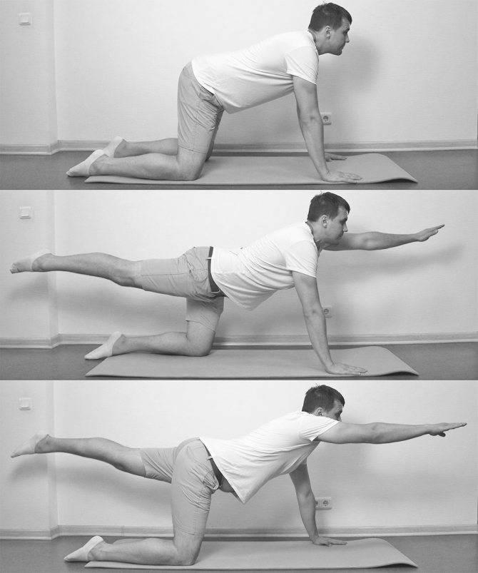 Лучшие упражнения для растяжки спины и позвоночника