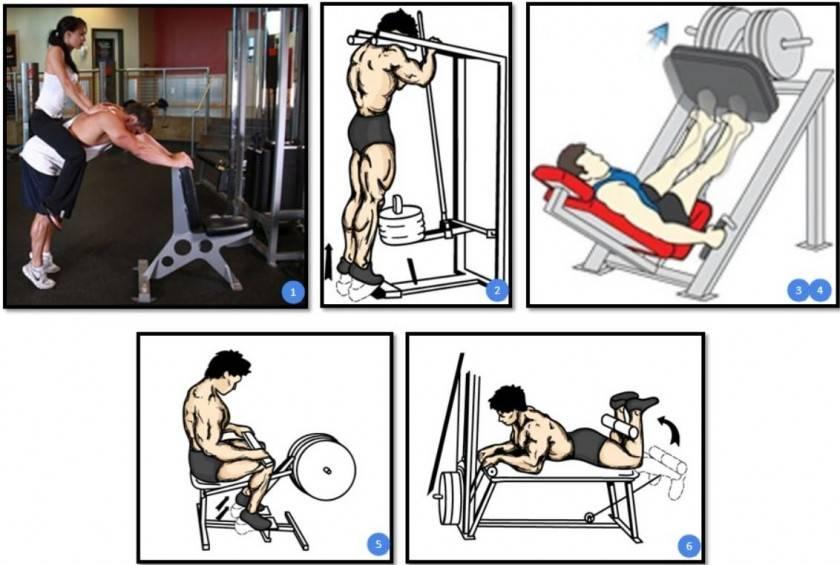 Как составить программу тренировок для тренажерного зала?