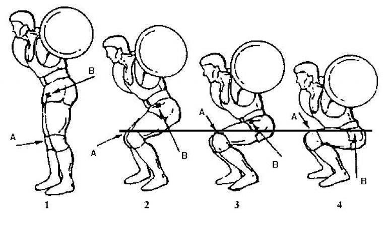 Полное руководство: как научиться правильно приседать со штангой: техника, экипировка
