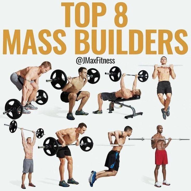 Базовые упражнения на все группы мышц - всё о спортивных тренировках