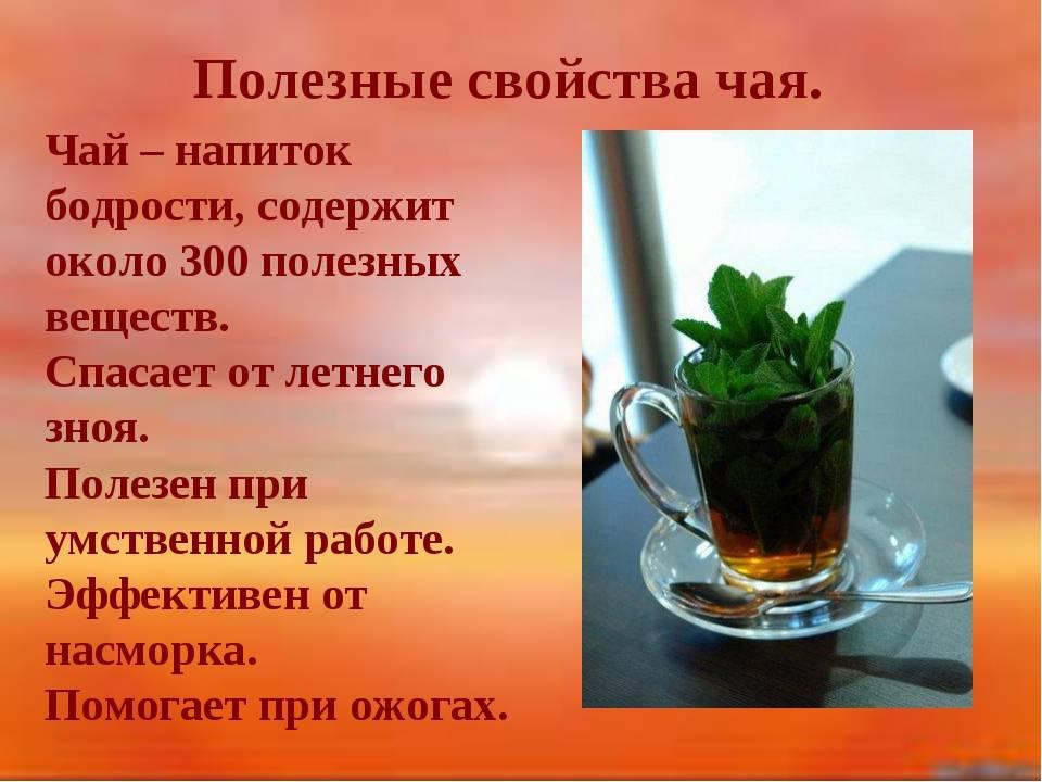 Зеленый чай для мужчины: огромная польза и непоправимый ущерб
