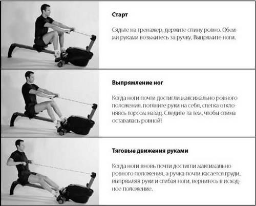 Зожник     главное о гребном тренажере + 8 тренировок