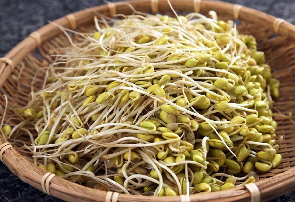 Реальная польза и выдуманный бред о ГМО: самая подробная статья о сое
