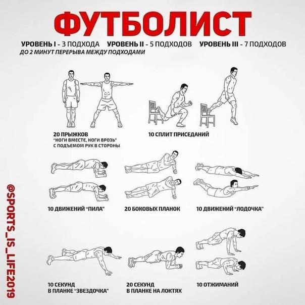 Базовые упражнения на все группы мышц