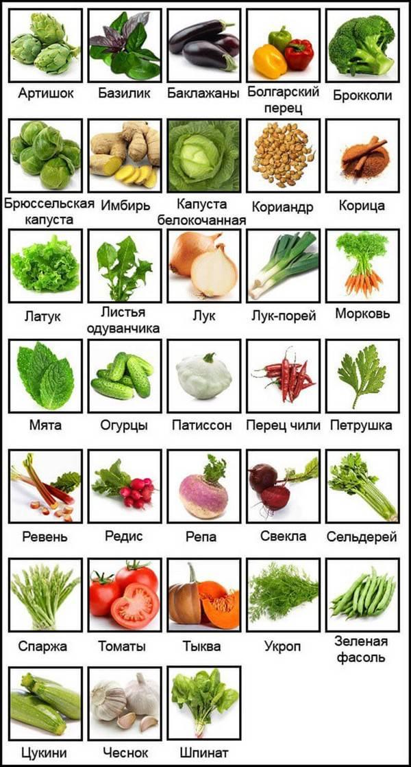 Продукты для похудения — список и таблица низкокалорийных продуктов