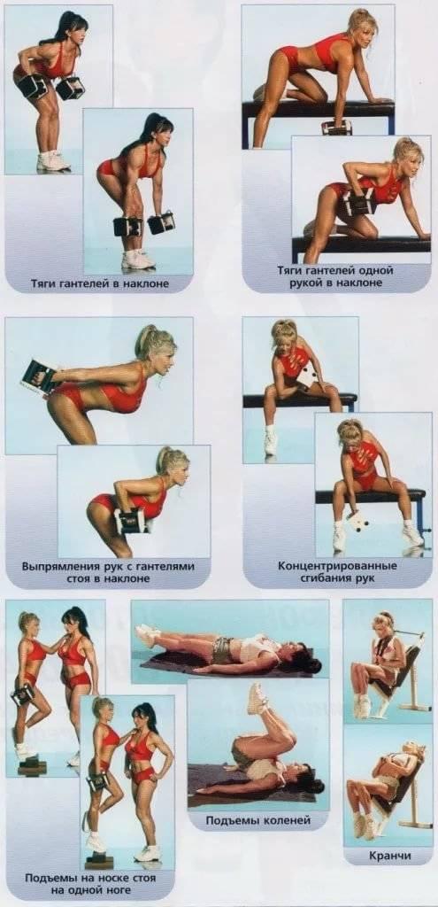 Программа тренировок в тренажерном зале для девушек для сжигания жира