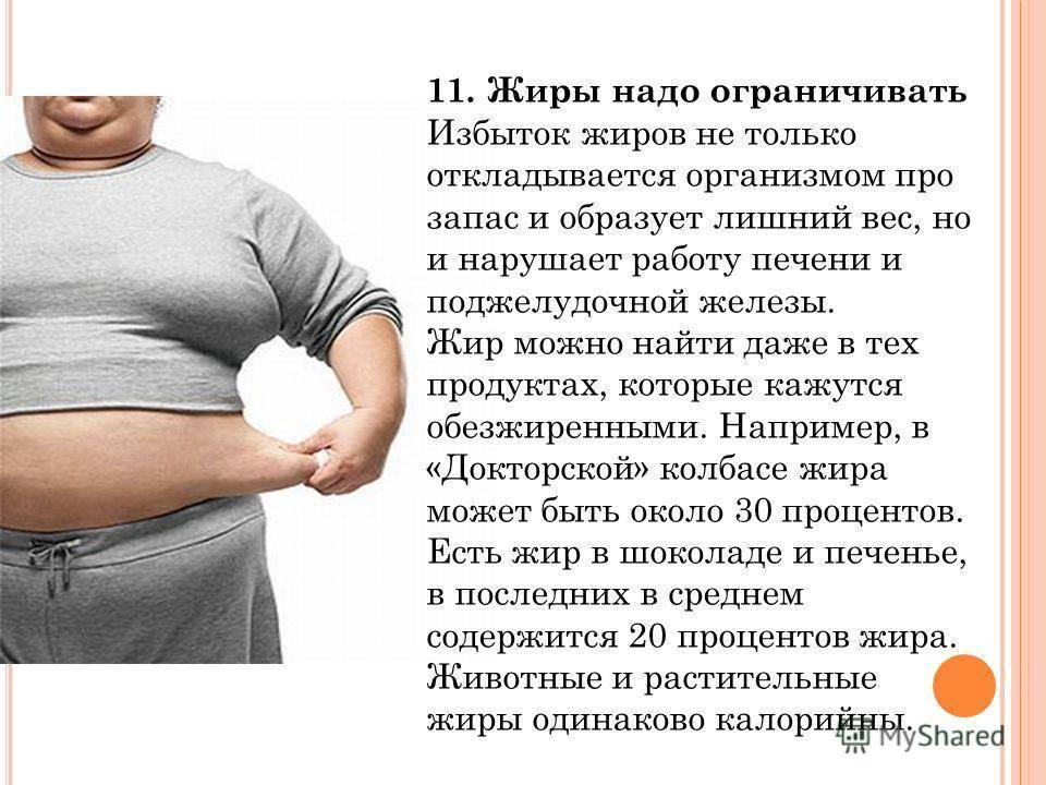 Для чего нужен жир в организме?