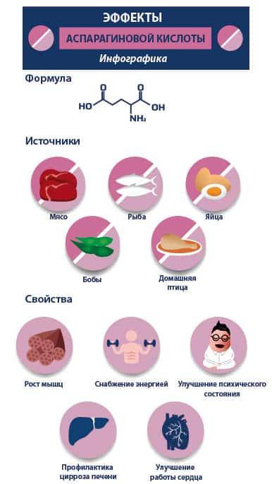 Аспарагиновая кислота: характеристика, формула, воздействие на организм и правила применения