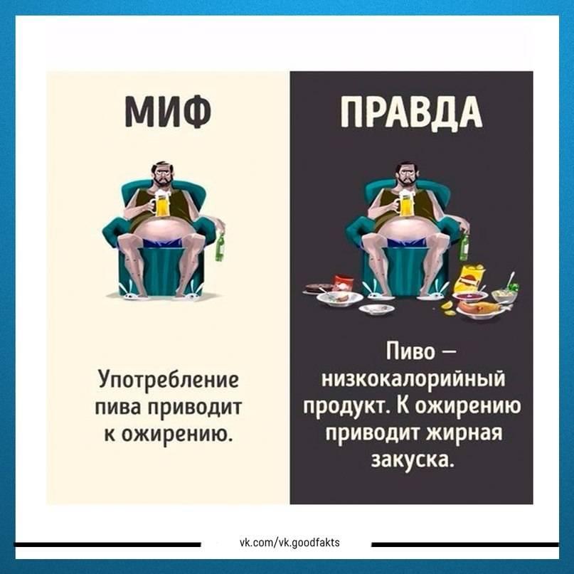 6 заблуждений о спортивном питании российского производства