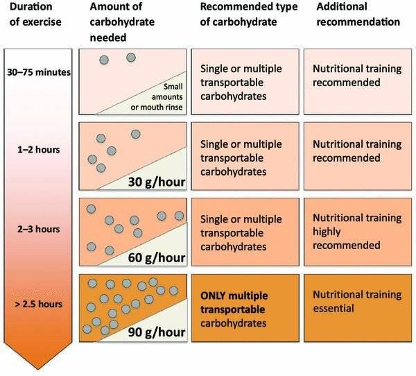 Могут ли углеводы превращаться в жир? – еда – польза и вред – 4fresh school