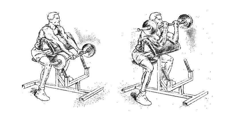 Сгибание рук на скамье скотта: техника, ошибки