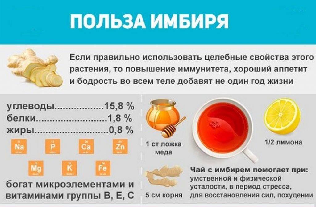 Имбирь. полезные свойства имбиря