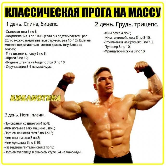 Тренировка на грудь, бицепс: эффективная трехдневная программа упражнений для действенной прокачки мышц