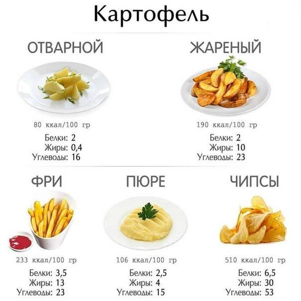 Картофель фри — калорийность (сколько калорий в 100 граммах)