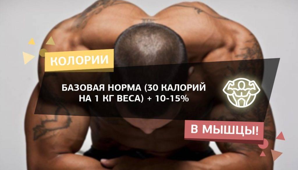 Набор мышечной массы для девушек | musclefit