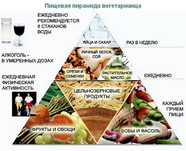 Вегетарианство: плюсы и минусы   с чего начать