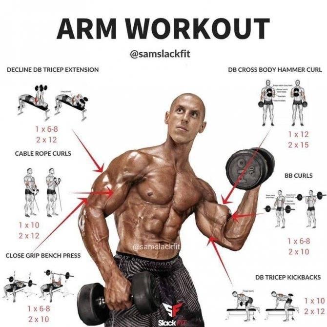 Упражнения на бицепс - самые эффективные для массы и объема бицепса в тренажерном зале или в домашних условиях