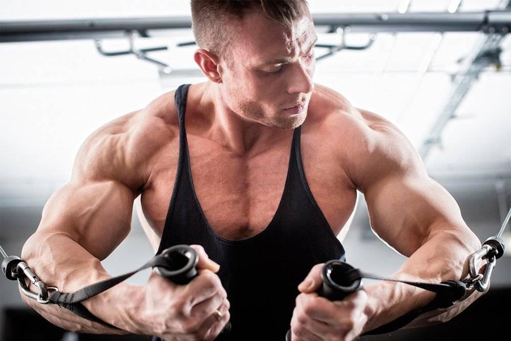 Сколько раз в неделю нужно тренироваться в тренажерном зале?