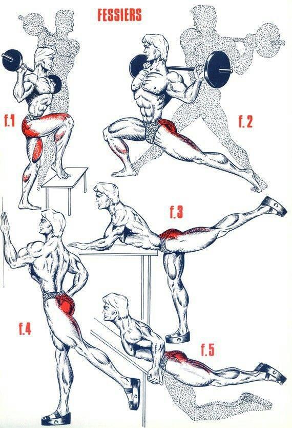 Как накачать ноги в домашних условиях, лучшие упражнения для ног