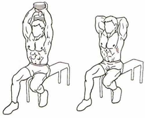 Как правильно делать разгибание рук из-за головы с гантелью сидя двумя руками