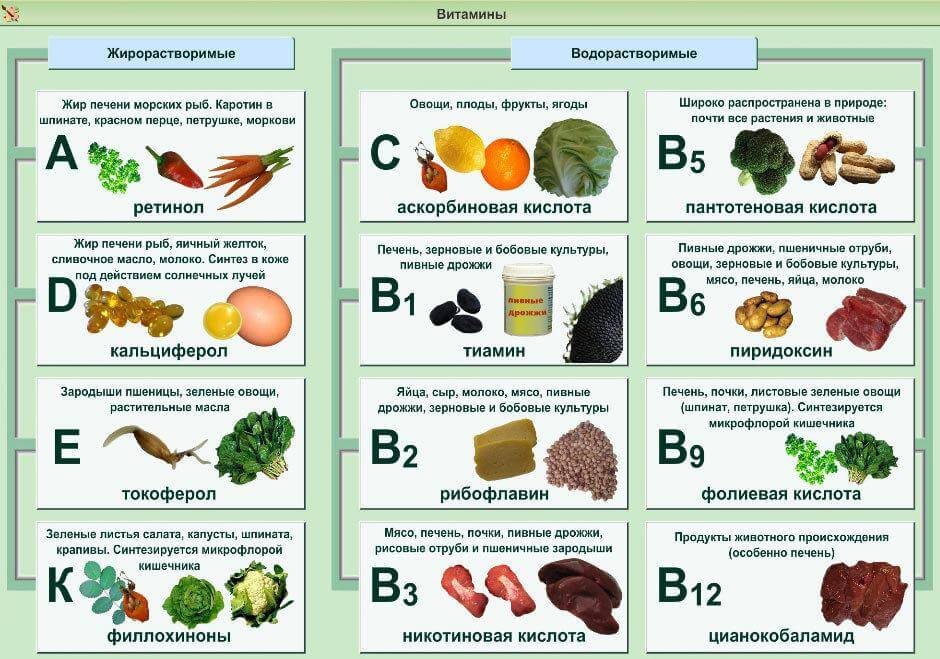 Полезные продукты для кожи: 6 витаминов для молодости кожи лица и тела