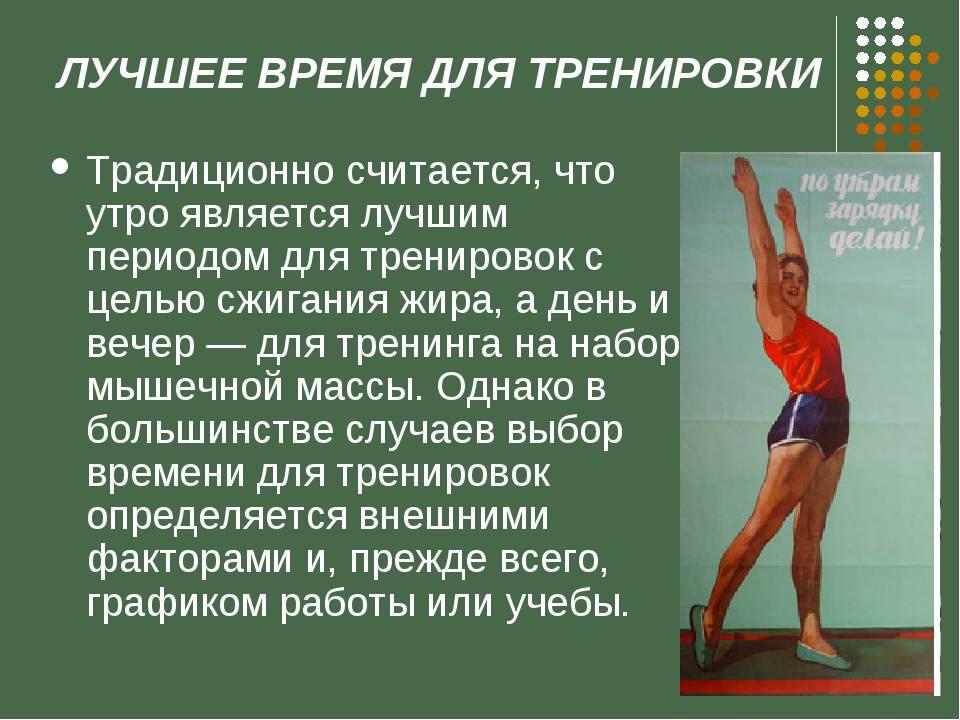 Когда лучше заниматься спортом для похудения, в какое время суток: утром или вечером