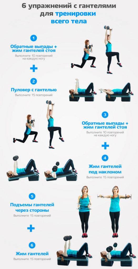 Упражнения с гантелями для похудения