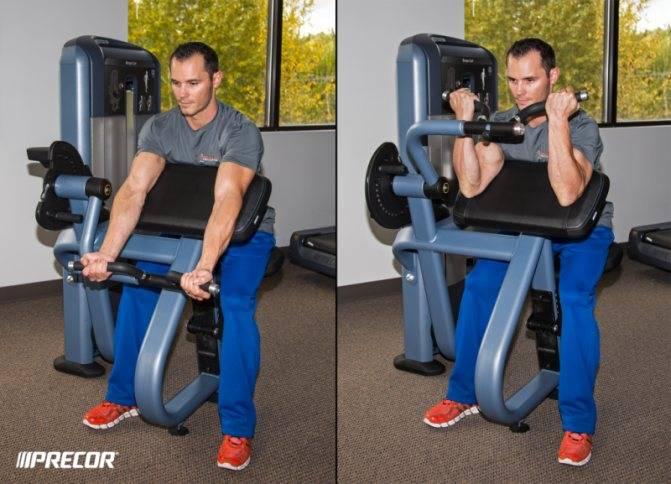 Сгибания рук на скамье скотта: описание упражнения с фото, пошаговая инструкция выполнения, проработка мышц рук и тела