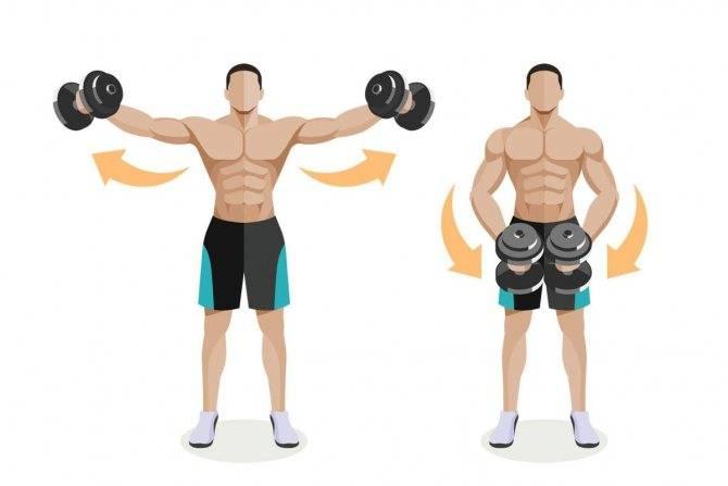 Разведение рук с гантелями стоя | фитнес упражнения для женщин
