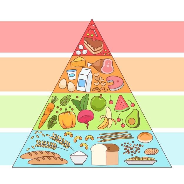 Пирамида питания: основы, правила и уровни
