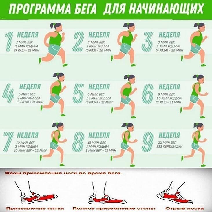 Когда лучше заниматься стретчингом: утром или вечером