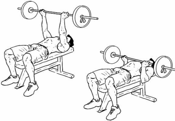 Жим лежа в пауэрлифтинге | техника выполнения упражнения