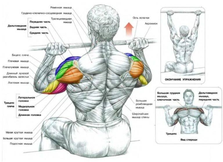 Дроп-сеты (drop sets) для роста мышечной массы. скажи нет застою!